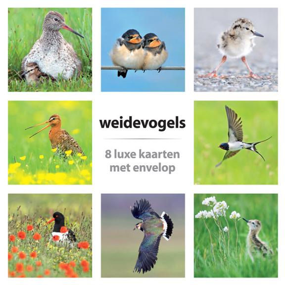 Kaartenset Weidevogels