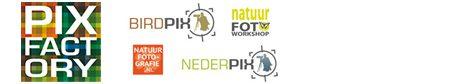 Webshop Birdpix Nederpix