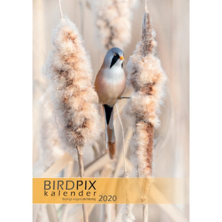 Birdpix kalender 2020
