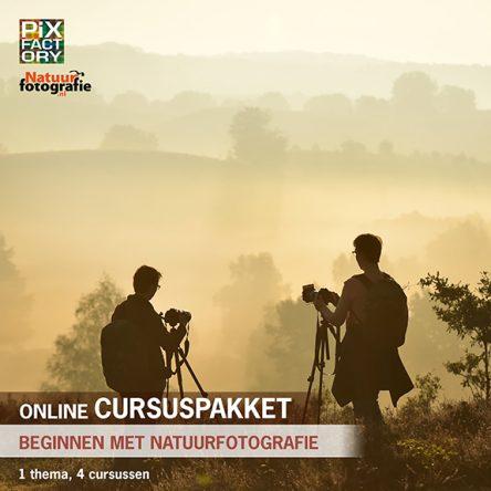 Online cursuspakket: Beginnen met natuurfotografie – 4 cursussen