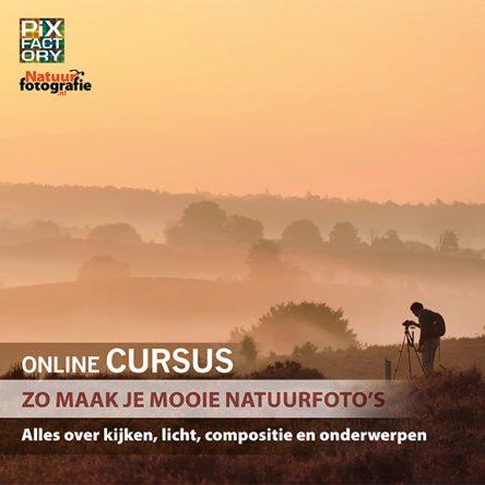 Online cursus: Zo maak je mooie natuurfoto's