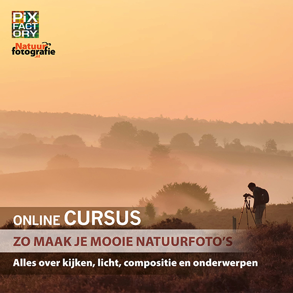 online cursus cover zo maak je mooie natuurfotos