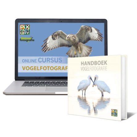 Combideal Vogelfotografie: handboek en online cursus