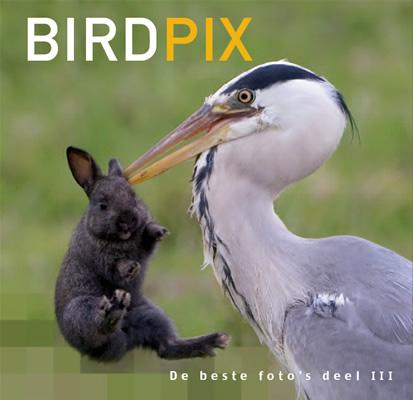 Birdpix 3 - De beste foto's