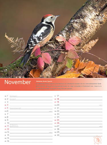 Birdpix vogelkalender 2017